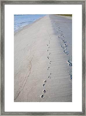 Footprints And Pawprints Framed Print