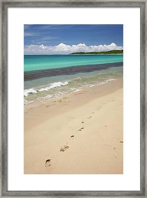 Footprints In Sand On Natadola Beach Framed Print