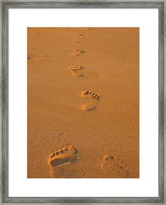 Footprints In The Sand Framed Print by Andreas Thust