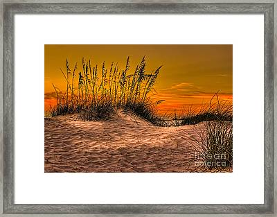 Footprints In The Sand Framed Print by Marvin Spates
