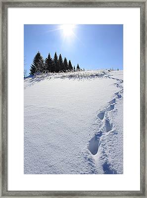 Footprints In The Snow Framed Print by Penny Meyers