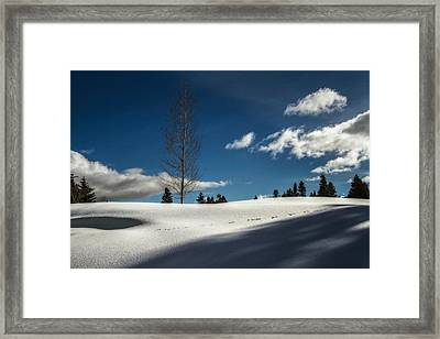 Footprints In The Snow Framed Print by Randy Wood