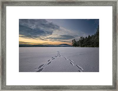 Footsteps In The Snow Framed Print by Darylann Leonard Photography