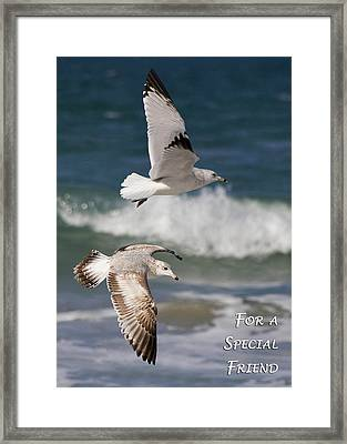 For A Special Friend Framed Print by Dawn Currie