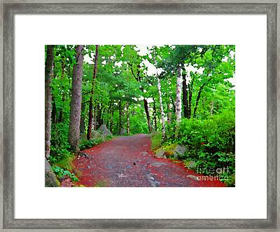 For A Stroll Framed Print by Jamie Potter