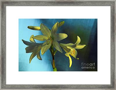 For All Woman In The World Framed Print by Odon Czintos
