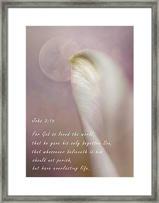 For God So Loved The World Framed Print by David and Carol Kelly