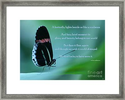 For Just A Little While Framed Print by Sandra Clark