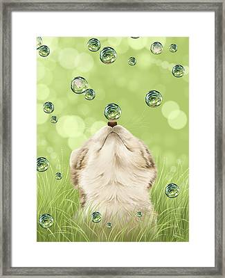 For Kicks Framed Print by Veronica Minozzi