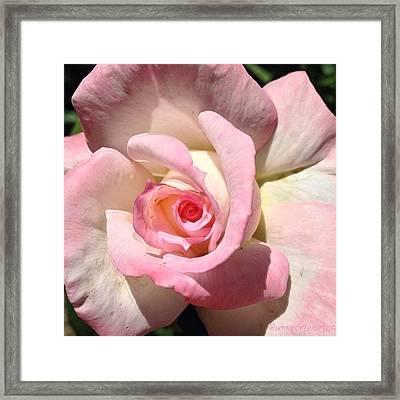 For My Sweetheart Framed Print