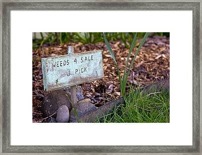 Framed Print featuring the photograph For Sale Sign by Bob Noble Photography