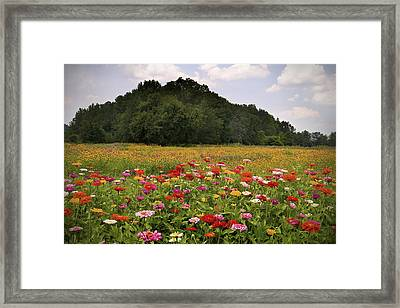For The Beauty Of The Earth Framed Print