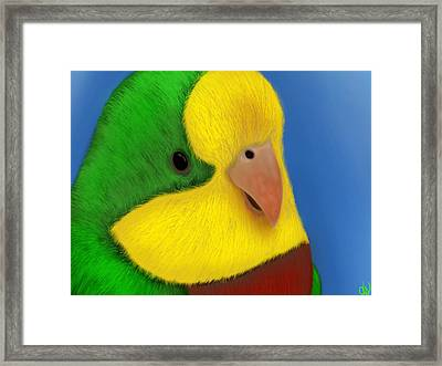 For The Birds Framed Print by Daniel Sallee