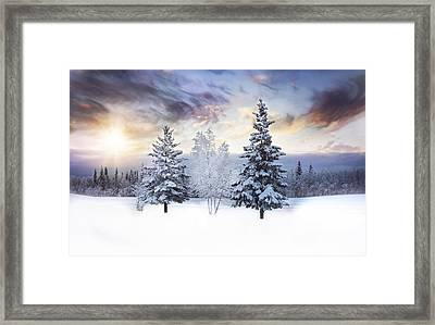 For The Love Of Winter Framed Print by Amber Fite