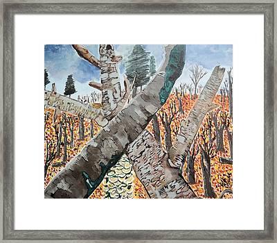 For The Trees Framed Print
