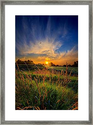 For When The Day Began Framed Print by Phil Koch