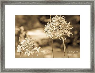 For You Framed Print by Sue OConnor