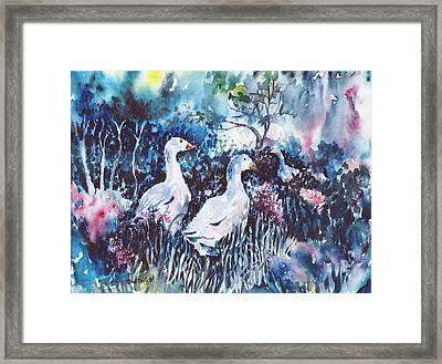 Foraging Ducks  Framed Print by Trudi Doyle
