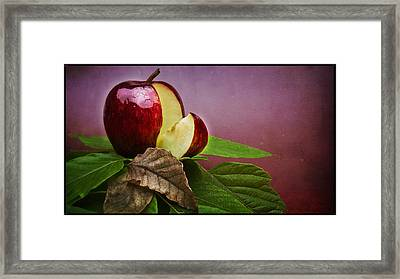 Forbidden Fruit Framed Print by Tim Nichols