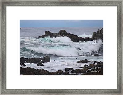 Force Of Nature Framed Print by Bev Conover