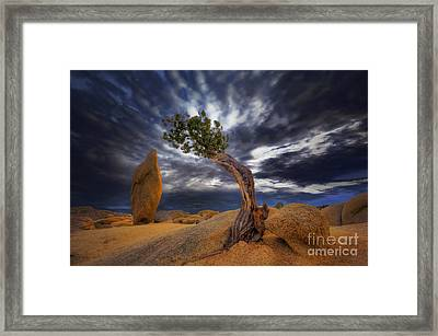Forces Of Nature Framed Print by Marco Crupi
