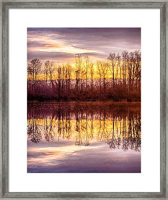 Framed Print featuring the photograph Foreboding by Tom Cameron