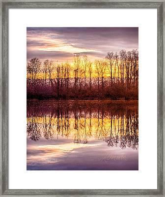 Foreboding Framed Print by Tom Cameron