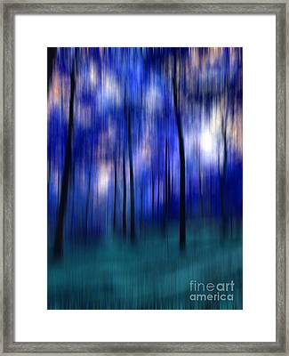 Forest Abstract 2 Framed Print by Angela Bruno
