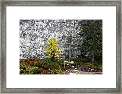 Framed Print featuring the photograph Forest Altar by Leena Pekkalainen
