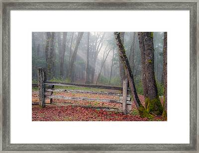 Forest And Fence Framed Print by Leland D Howard