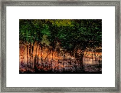 Forest At Sundown Framed Print