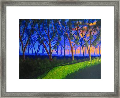 Forest At Sunset Framed Print by Haleema Nuredeen