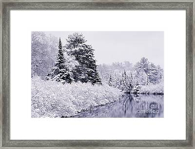 Forest Covered With Snow Framed Print by Rod Planck