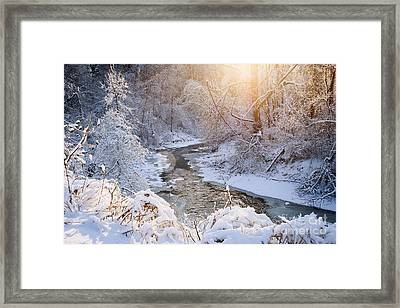 Forest Creek After Winter Storm Framed Print