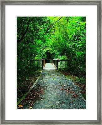 Forest Entrance Framed Print by Ester  Rogers