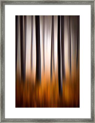 Forest Essence Abstract Autumn Landscape Framed Print by Dave Allen