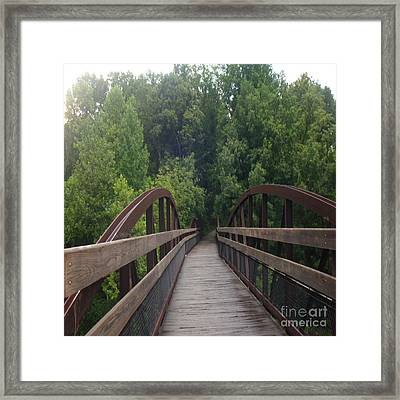 Forest Fantasy Framed Print by Mj Petrucci