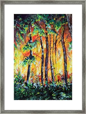 Forest Fire In The Pine Barrens Framed Print