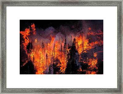 Forest Fire Framed Print by Kari Greer/science Photo Library