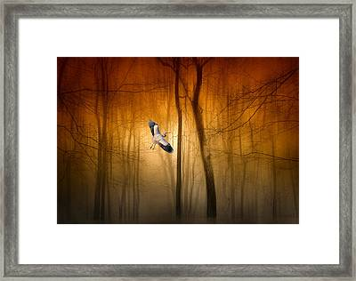 Forest Flight Framed Print by Jessica Jenney