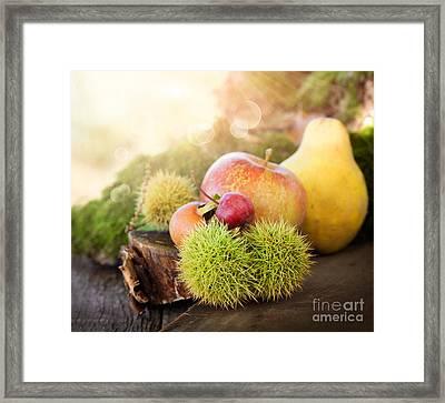 Forest Fruit Framed Print by Mythja  Photography