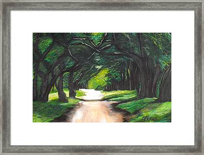 Forest Full Of Trees Framed Print by Melissa Torres