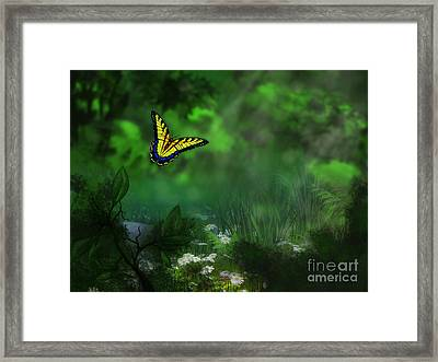 Forest Glade Butterfly Background Framed Print