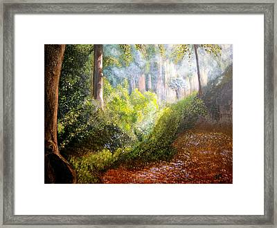 Forest Glade Framed Print by Heather Matthews