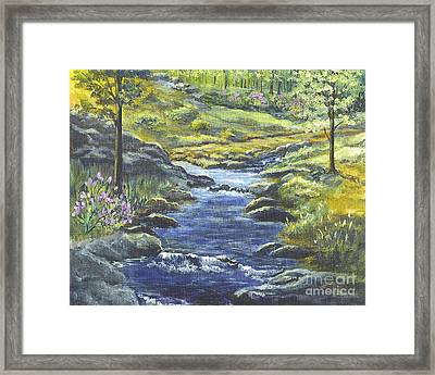 Forest Glen Brook Framed Print by Carol Wisniewski