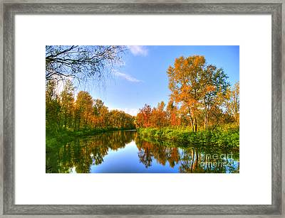 Framed Print featuring the photograph Forest Golden Green by Boon Mee