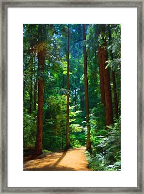 Forest Heights Framed Print by John Robichaud
