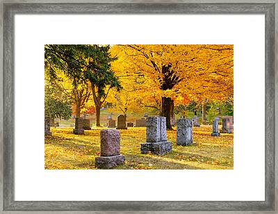 Forest Hill Autumn Morn II Framed Print
