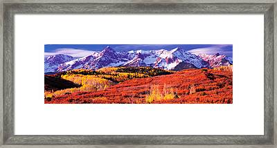 Forest In Autumn With Snow Covered Framed Print