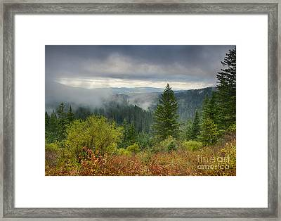 Forest Mists Framed Print by Idaho Scenic Images Linda Lantzy
